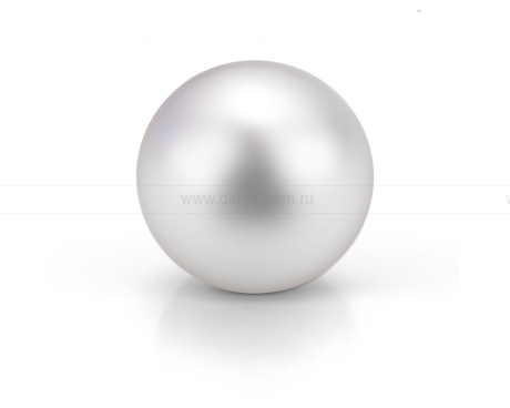 Жемчужина белая морская Австралийская 16,6 мм. Класс высокий АА+. Артикул 10523