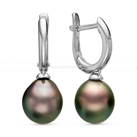 Серьги из серебра с Таитянскими жемчужинами 9,6-9,9 мм. Артикул 11110