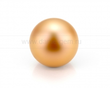 Жемчужина золотистая морская Австралийская. Артикул 11664