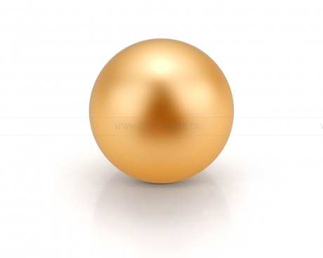 Жемчужина золотистая морская Австралийская 11-11,5 мм. Класс наивысший ААА. Артикул 11665