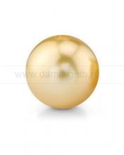 Жемчужина золотистая круглая морская Австралийская. Артикул 12285