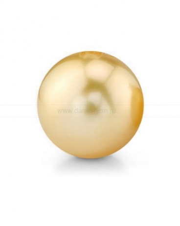 Жемчужина золотистая морская Австралийская 14-14,5 мм. Класс средний АА. Артикул 12285