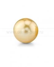Жемчужина золотистая круглая морская Австралийская. Артикул 12294