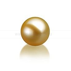Жемчужина золотистая морская Акойя (Япония) 7,5-8 мм. Класс наивысший ААА. Артикул 9786