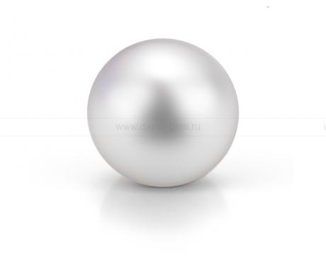 Жемчужина белая морская Австралийская 10,6-10,9 мм. Класс высокий АА+. Артикул 9810
